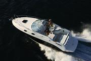 Продам новый круизный катер Sea Ray 255 Sundancer