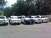 AVTO VIP прокат лимузинов кортежи