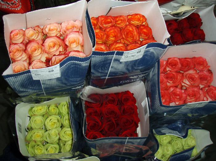 Цветы в казахстане оптом