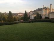 Рулонный газон. Укладка,  стрижка и др.