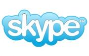 Обучение по скайпу от Open Door!