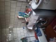 Пол дома. Вход,  ванна,  кухня и кочегарка из кирпича. Место оживлённое,