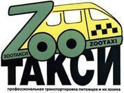 Зоотакси ,  такси для животных