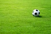 Искусственный газон для спорта 40мм