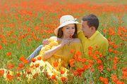 Фотограф в Алматы,  Фотосъемка love story,  свадебный фотограф, фотокниги