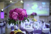 Организация Свадеб в г. Алматы