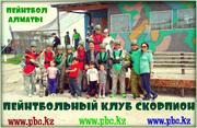 Пейнтбол весной в клубе Скорпион,  Пейнтбол Алматы