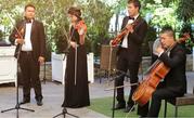 Струнный квартет «Musique de l'arche»