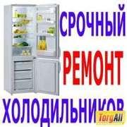Ремонт холодильников в Алматы и пригород