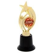 Кубок малый Лучший руководитель звезда 46837
