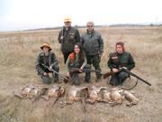 Ищу охотничье угодье или фазенду для сотрудничества