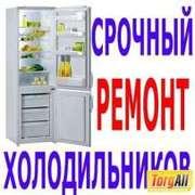 Ремонт холодильников, витрин в Алматы