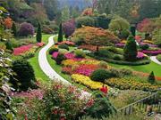 Консультации по уходу за садом