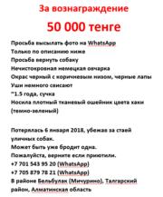За вознаграждение 50 000 тенге