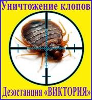 Как избавиться от клопов услуги - Уничтожение клопов в Алматы