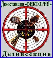Дезинсекция - уничтожение насекомых в Алматы