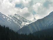 Срочно ровный участок 22 сотки в горах вверх по Навои