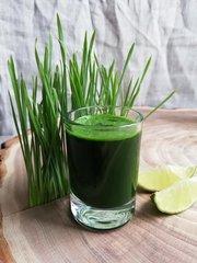 Витграсс - сок из ростков пшеницы и ячменя