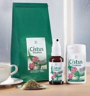 Цистус Инканус травяной чай от LR