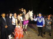 лошадь,  конь,  пони